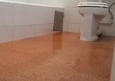 Glue Down Cork to Bathroom Floors